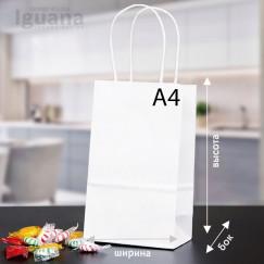 Крафт-пакет с кручеными ручками БЕЛЫЙ (290х200х120мм) A4